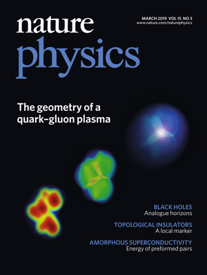 Nature Physics 2019 March cover