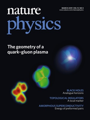 Nature Physics March 2019 Cover